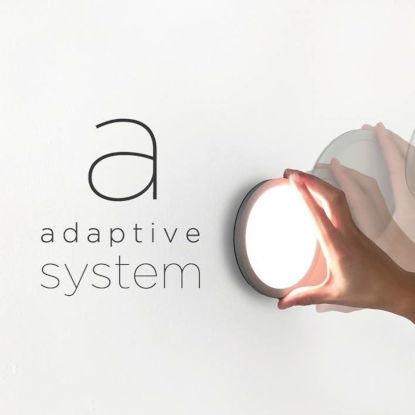 LYM & Adaptive System